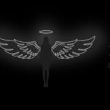 107_Angel_Wings_NE_W