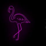 116_Flamingo_NE_P