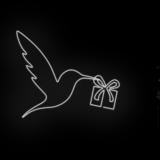 117A_Hummingbirdpresent