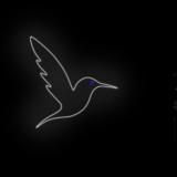 117_Hummingbird_NE_W_blue