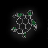 121_Sea_Turtle_NE_silver+green