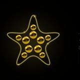 124_Starfish_RL_WW_gold_shiny