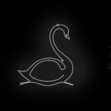 125_Swan_W_shiny